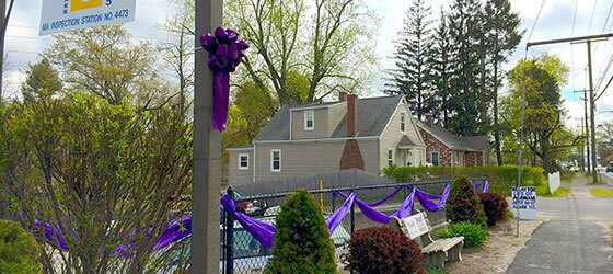 town-purple